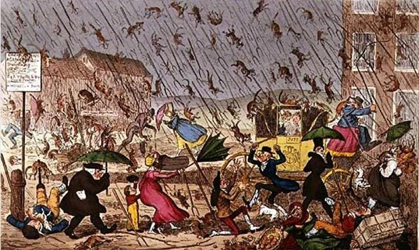 Cats And Dogs Raining Origin
